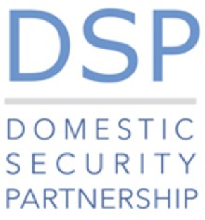 Logo for DSP