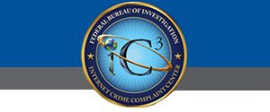 The Internet Crime Complaint Center (IC3)